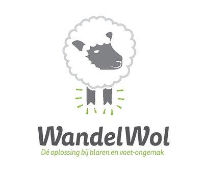WandelWol antidruk-wol 40 gram