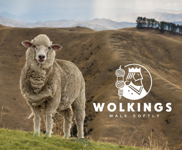 Wolkings Anti druk wol